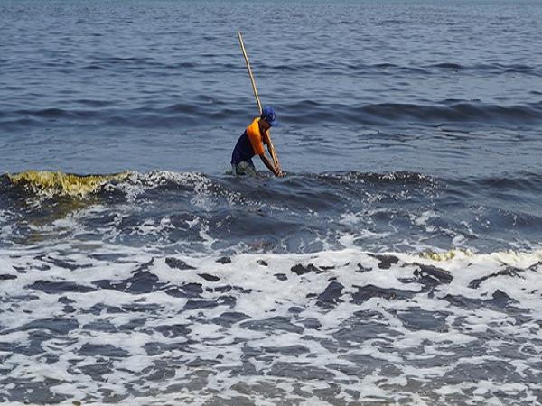Mơ thấy biển dự báo trước điềm gì? mang đến vận may hay xui?