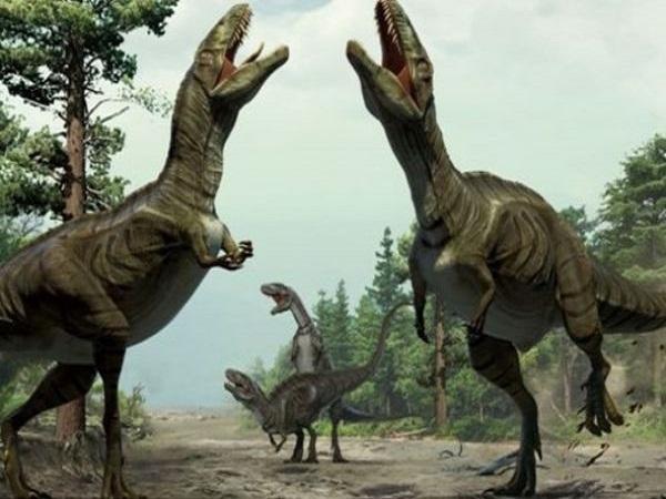 Mơ thấy Khủng Long đánh con gì? Ý nghĩa mơ thấy khủng long?