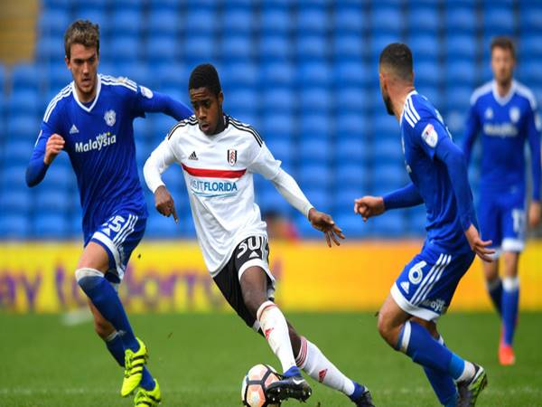 Nhận định tỷ lệ Cardiff City vs Fulham (1h45 ngày 28/7)