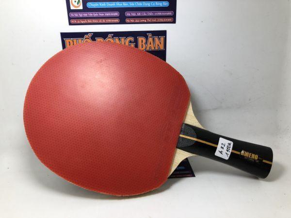 Hướng dẫn cách chọn mặt vợt bóng bàn tấn công tốt nhất